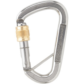 AustriAlpin Stainless Steel Screwlock D-Carabiner with Splint